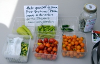 """Help yourself to some fresh produce!"" Indiana Community Garden"